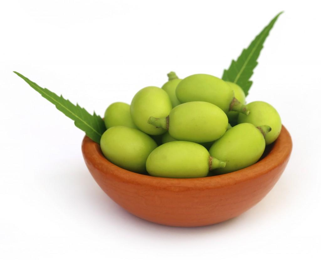 Ulei de neem pentru tratarea ciupercii piciorului